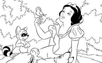 Dibujos Para Colorear Página 64 De 88 Dibujos De Tus