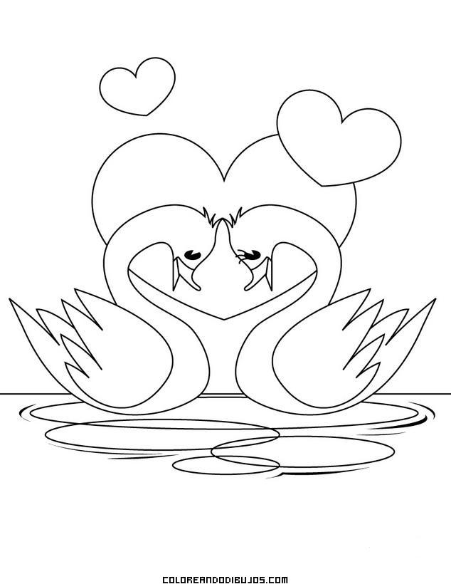 Cisnes Enamorados Dibujos Para Colorear