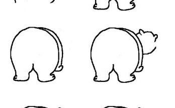 Dibujo Cómo dibujar a un oso polar