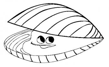 Dibujo Dibujo de una almeja marina muy risueña
