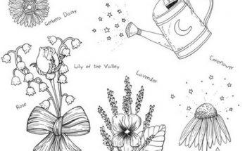 Dibujo Flores variadas