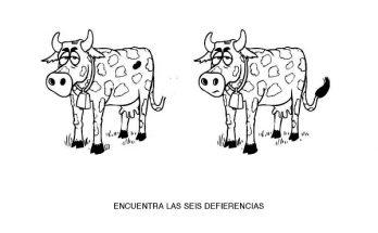 Dibujo Encuentra las 6 diferencias en las vacas
