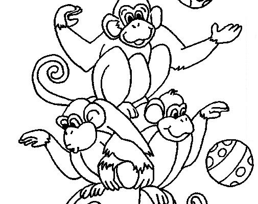 Monos Malabaristas De Circo Dibujos Para Colorear