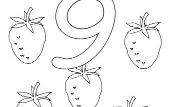Dibujo Del Número 9 Para Colorear Archivos Dibujos Para