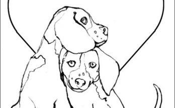 Dibujo Los perros y el amor