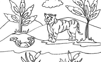 Dibujo Paisaje de la selva para colorear