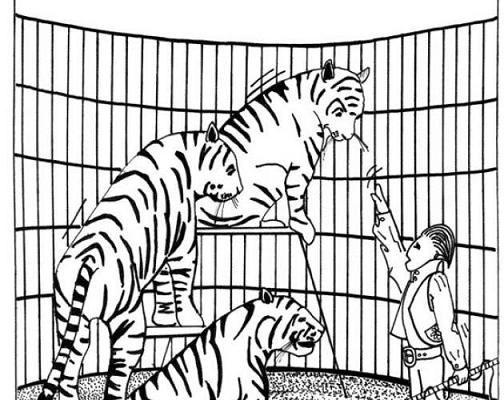 Tigres En El Circo Dibujos Para Colorear